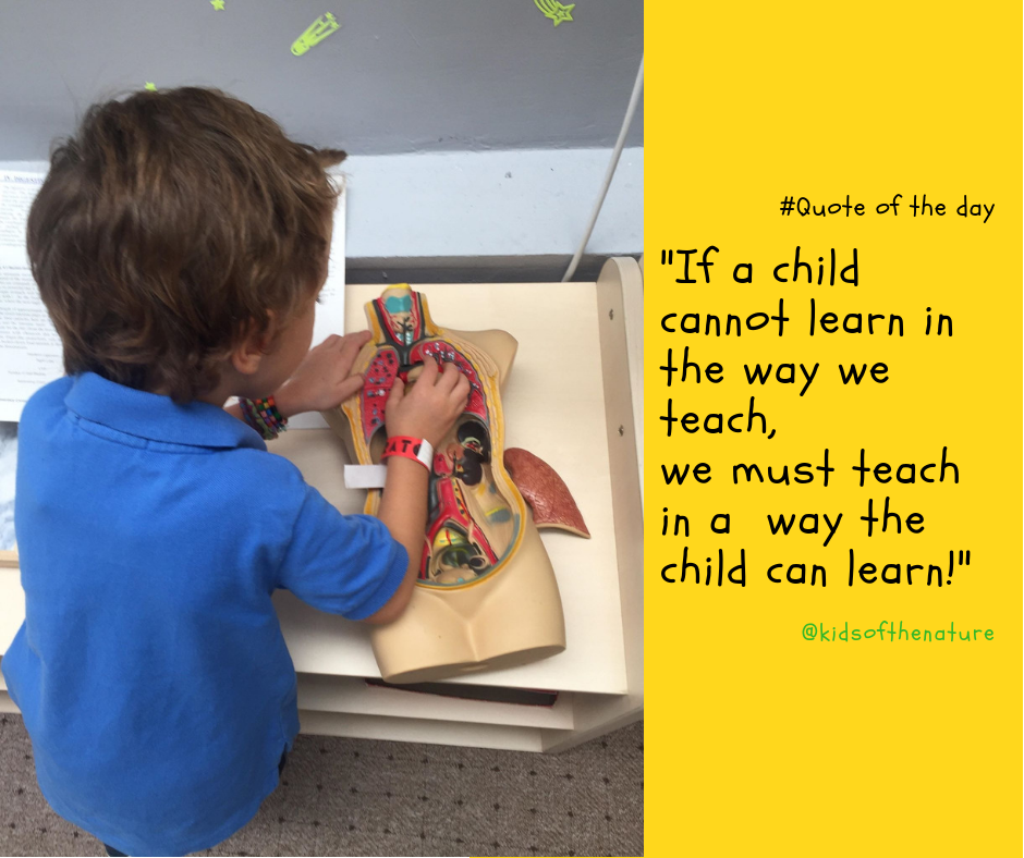If a child cannot learn in the way we teach, we must teach in a way the child can learn!